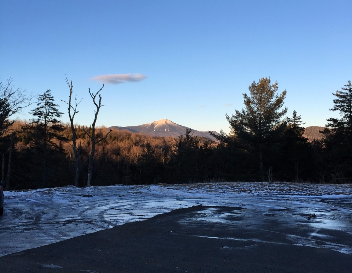 whiteface2